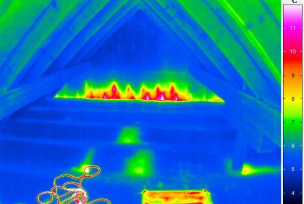 2021-04 Thermografie Header